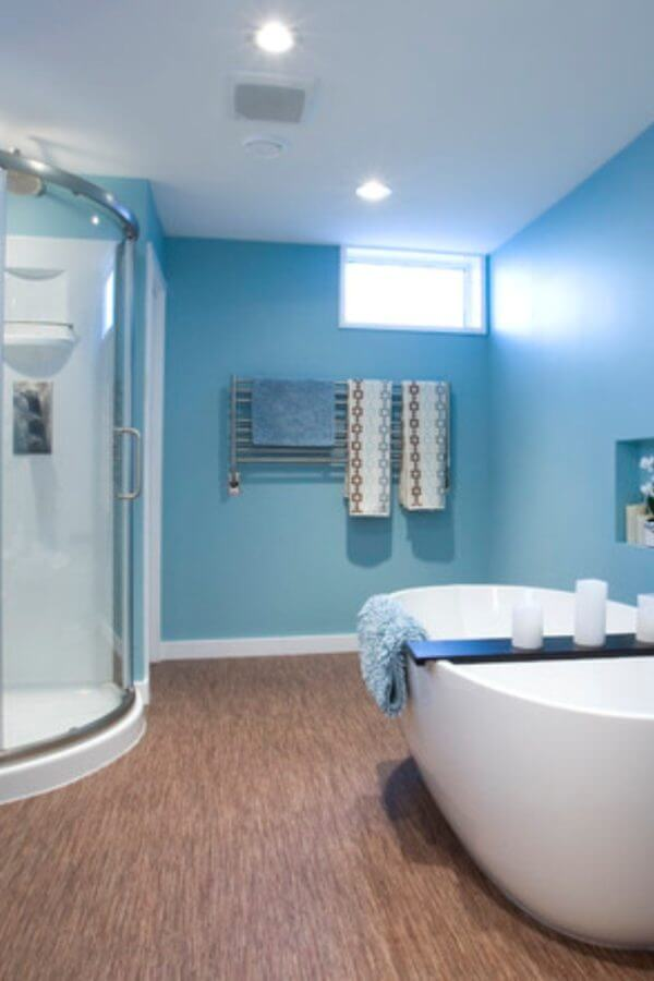 Interior Painting and Bathroom Remodel Plans